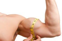 Medindo seu bíceps imagens de stock royalty free