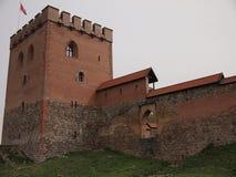 Medininkaikasteel (Litouwen) stock afbeelding