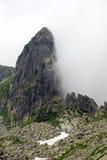 Medio Imagen de archivo