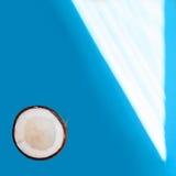Medio coco aislado en fondo azul Trayectoria de recortes Fotos de archivo