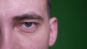 Medio lanzamiento de la cara del primer del varón atractivo adulto que mira la cámara con el fondo aislado en verde almacen de metraje de vídeo