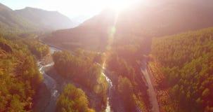 Medio luchtvlucht over verse bergrivier en weide bij zonnige de zomerochtend Landelijke hieronder landweg stock videobeelden