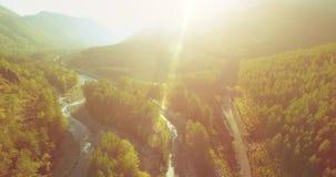 Medio luchtvlucht over verse bergrivier en weide bij zonnige de zomerochtend Landelijke hieronder landweg stock footage