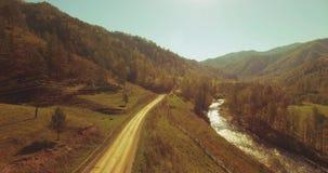 Medio luchtvlucht over verse bergrivier en weide bij zonnige de zomerochtend Landelijke hieronder landweg Koeien en auto stock videobeelden