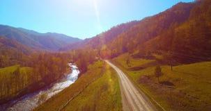 Medio luchtvlucht over verse bergrivier en weide bij zonnige de zomerochtend Landelijke hieronder landweg Koeien en auto stock footage