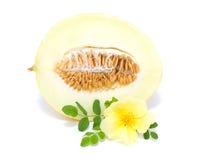 Medio melón con la flor Foto de archivo libre de regalías