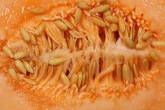 Medio melón del cantalupo del corte Imágenes de archivo libres de regalías