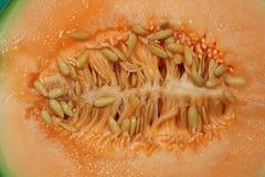 Medio melón del cantalupo del corte Fotos de archivo