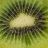 Medio primer de la fruta de kiwi Fotos de archivo libres de regalías