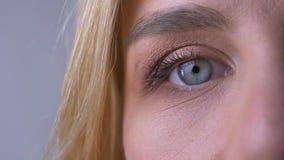 Medio retrato del primer del ojo azul derecho de la mujer que mira directamente en cámara en fondo gris almacen de video