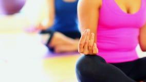 Medio sectie bij het mediteren van jonge vrouwen die op oefeningsmatten zitten stock video