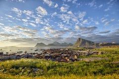 Medio summerday in Sandnes, Lofoten-eilanden, noordelijk Noorwegen Royalty-vrije Stock Foto's
