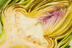 Medio tiro fresco de la macro de la alcachofa Fotos de archivo