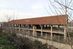 Mediolan, Milano staten kolej Zdjęcie Royalty Free