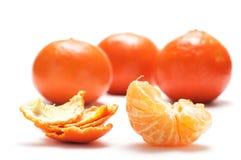 Medios mandarina y shell. Fotografía de archivo