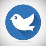 Medios pájaro social azul redondo del icono del web o de Internet Foto de archivo libre de regalías