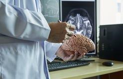 Medique a anatomia demonstarting do cérebro humano e o cérebro de MRI no backgr fotos de stock royalty free