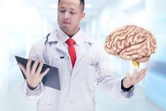 Medique guardar os órgãos humanos e a tabuleta em um hospital De alta resolução Foto de Stock Royalty Free