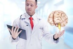 Medique guardar os órgãos humanos e a tabuleta em um hospital De alta resolução Imagem de Stock