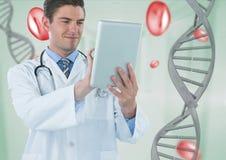 Medique o homem que usa uma tabuleta com a costa e as pilhas do ADN 3D Fotos de Stock