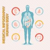 Medisch infographic menselijk lichaam Stock Afbeelding