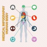 Medisch infographic menselijk lichaam Royalty-vrije Stock Afbeelding