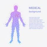 Medische achtergrond Menselijke anatomie royalty-vrije illustratie