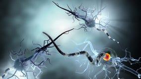 Medische illustratie, zenuwcellen Stock Afbeelding