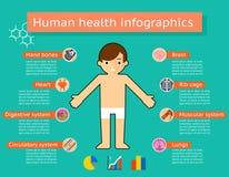 Medische infographics van menselijk lichaamssystemen Royalty-vrije Stock Foto