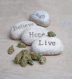 Medische marihuana Royalty-vrije Stock Afbeelding