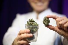 Medische marihuana in de hand van een arts cannabis alternatieve geneeskunde royalty-vrije stock afbeelding