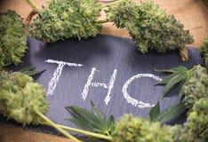 Medische marihuanaachtergrond met van cannabisknoppen & bladeren het ontwerpen Stock Fotografie