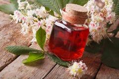 Medische tint van bloemenkastanje in een horizontale fles Stock Afbeelding
