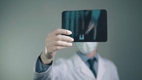Medische voorbereidingen, Röntgenstraal in de handen van de arts, beschermende handschoenen op de handen, witte robe, gezichtsmas stock footage