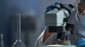 Medische wetenschapper die oppervlakte van microscoop voor macro voorbereiden die proces onderzoeken royalty-vrije stock foto's