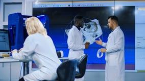 Medische wetenschappers die menselijke schedel onderzoeken royalty-vrije stock afbeeldingen