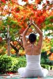 Meditação da ioga Foto de Stock