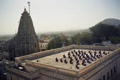 Meditação na Índia. Imagens de Stock Royalty Free