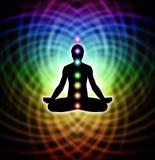 Meditação na matriz Imagem de Stock Royalty Free