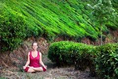 Meditación en plantaciones de té Foto de archivo