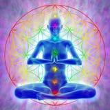 Meditación - flor de la vida ilustración del vector