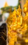 Meditando a Buda Imagem de Stock Royalty Free