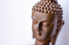 Meditando a cabeça da Buda fotos de stock royalty free