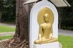 Meditando o bas-relevo dourado dourado de buddha buddha Imagens de Stock