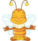 Meditare ape Fotografie Stock Libere da Diritti