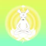 Meditare topo nel loto Fotografia Stock