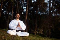 Meditatie in bos stock afbeelding