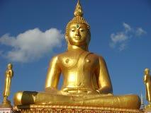 Meditatie die de aard van Boedha mediteren Royalty-vrije Stock Foto's