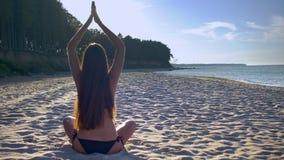 Meditatie op het Overzeese Strand stock footage