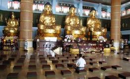 Meditatie in tempel Royalty-vrije Stock Foto